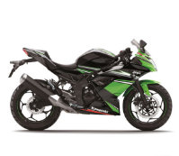 Kawasaki Ninja 250SL (2014) Price, Specs & Review